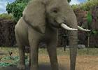 動物をウォッチング&フィーディング!3DS「アニマルリゾート 動物園をつくろう!!」正式タイトルが決定