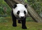 3DS「アニマルリゾート 動物園をつくろう!!」公式サイトがリニューアルオープン!発売日は2011年5月19日予定
