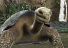 3DS「アニマルリゾート 動物園をつくろう!!」東武動物公園の入園券が当たる!発売記念プレゼントキャンペーン開始