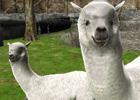 3DS「アニマルリゾート 動物園をつくろう!!」ゲームに登場する動物&お楽しみ要素を紹介
