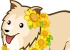 ブラウザゲーム「みんなで牧場物語」夏らしく、イメージチェンジしよう!「みんなでヒマワリ大収穫祭!」開催