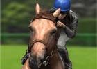 競馬ゲーム「ダービー馬をつくろう!」のスマートフォン版がGREEで配信開始