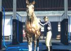 大型競馬マスメダルゲーム最新作「GI-GranDesire」「GI-GranDesire S」順次稼働開始