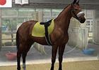 PS Vita版「ウイニングポスト 7 2013」最新の実在馬の登場や便利機能についてなど新規追加要素を紹介