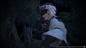 PS3/PC「ファイナルファンタジーXIV: 新生エオルゼア」ストーリーに大きく関わる10名のキャラクターを紹介!沢城みゆきさん、中村悠一さんなどボイスアクターの情報も
