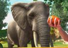 Xbox 360「Zoo Tycoon」が2014年3月20日に発売―本格的な動物園経営を楽しめるシミュレーションゲームの最新作が登場!