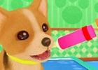 憧れの獣医さんの仕事を擬似体験!3DS「わんニャンどうぶつ病院 ステキな獣医さんになろう!」が2015年7月30日に発売