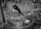 PS Vita「夜廻」少女が見たものは街をうろつく黒い影、不気味な生き物―公式サイトにて「少女の日記」が更新スタート