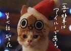 3DS「モンハン日記 ぽかぽかアイルー村DX」WEB CM第7話「聖夜」篇が公開!アイルーとのぽかぽかなクリスマスを堪能