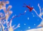 PS4/Xbox One/PC「UNRAVEL」が2月9日より順次配信開始―糸を使って絆を結ぶ心温まるパズルゲーム