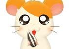 3DS「牧場物語 3つの里の大切な友だち」PV映像が公開!「とっとこハム太郎」コラボも決定