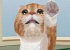 イマドキは1分で猫バカになれるんです!iOS/Android「てのひらニャンコ」のある生活