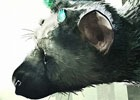 PS4「人喰いの大鷲トリコ」90名以上の演奏家が参加した楽曲メイキングトレーラーが公開!