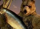 PS4/Xbox One/PC「鉄拳7」の追加キャラクターに「クマ&パンダ」が参戦!アーケード版のコラボ情報など新情報も発表