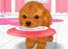 飼ってみたい、触れてみたいペットたちを独り占め!3DS「かわいいペットとくらそう! わんニャン&ミニミニアニマル」が4月6日に発売決定