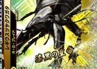 2大SSRが参戦!33種以上の新カードがラインナップされたAC「新甲虫王者ムシキング 激闘5弾」が稼働開始