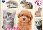 3DS「かわいいペットとくらそう! わんニャン&ミニミニアニマル」動物ごとの動きに注目のプロモーション映像が公開