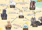 """iOS/Android「ねこ島日記」に登場する猫ちゃんたちを紹介!事前登録数が222,222を達成した記念に""""ねこ相関図""""も公開"""