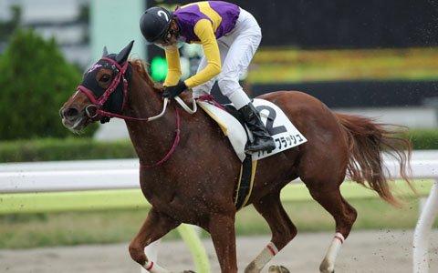 「リアルダービースタリオン」即戦力となる2歳馬「ファニーフラッシュ」がデビュー!新馬戦の結果は3着に