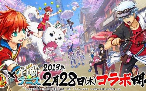 「銀魂」と「白猫テニス」のコラボを2月28日より開催!★5フェスガチャのチケットが最大10枚貰えるキャンペーンも実施