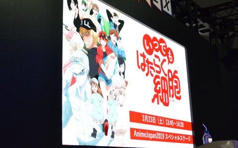 「いつでも はたらく細胞」サプライズで本日より配信開始!アニメ2期も発表となったAnimeJapanステージレポート
