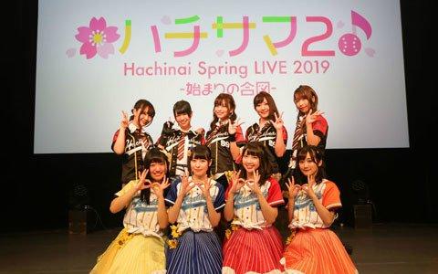 ハチナイのLIVEイベント「ハチサマ2 Hachinai Spring Live 2019 ~始まりの合図~」オフィシャルレポートが到着!