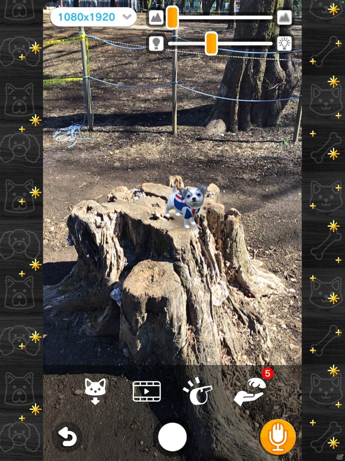 AR撮影も楽しめる育成シミュレーション「with My DOG - 犬とくらそう -」のAndroid版が配信!